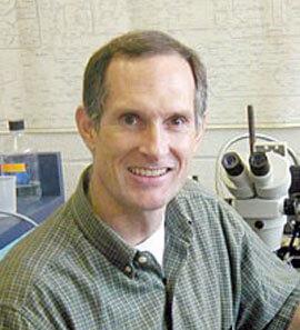 Bruce Stevens, Ph.D.